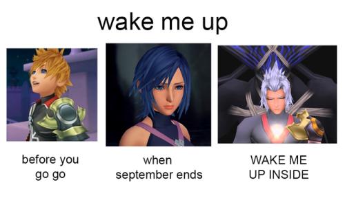 Wake Me Up Birth By Sleep Meme