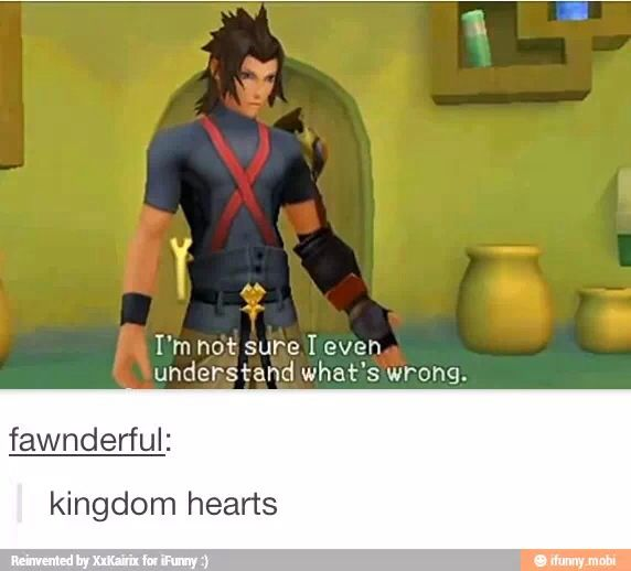 I'm not sure I even understand what's wrong Terra Kingdom Hearts meme